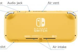 Exotic Nintendo Switch Lite Console 9