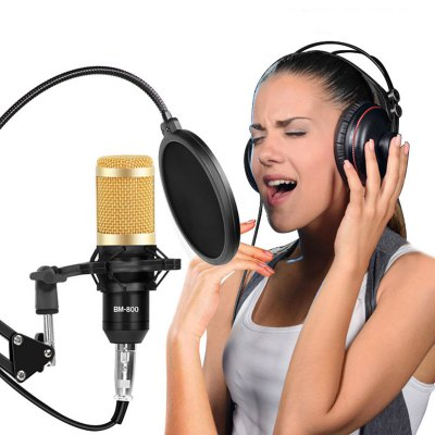 BM800 Professional Condenser Microphone Audio USB Microphone Phantom Power Supply Large Diaphragm Voltage Regulator Noise-Free Power Supply Adapter