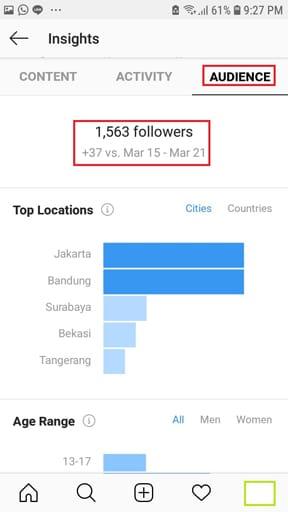 instagram insight audience