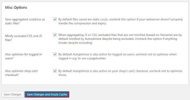 Autoptimize settings Misc options
